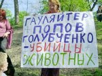 Посадили убийцу Киевских собак на 4 года