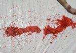 В Донецкой области сын забил до смерти свою мать
