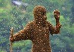 В Киеве активизировались осы, пчелы и шершни