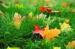 В случае ухудшения погоды отопление в киевских домах включат 1 октября